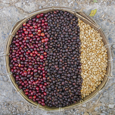 coffee beans berries drying natural process coffee beans .